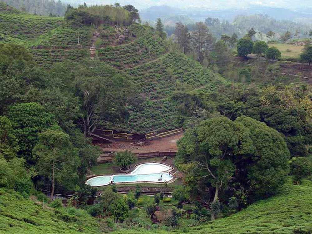 Kebun Teh Jamus, Wisata di Ngawi