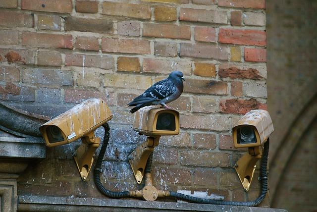 CCTV rumah