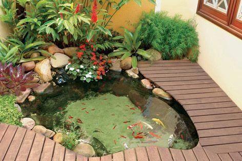 desain kolam ikan