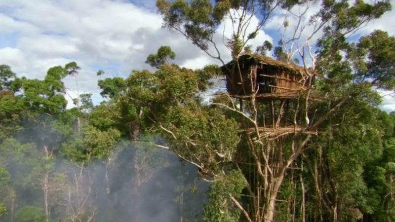Nama Rumah Adat Papua Beserta Penjelasannya