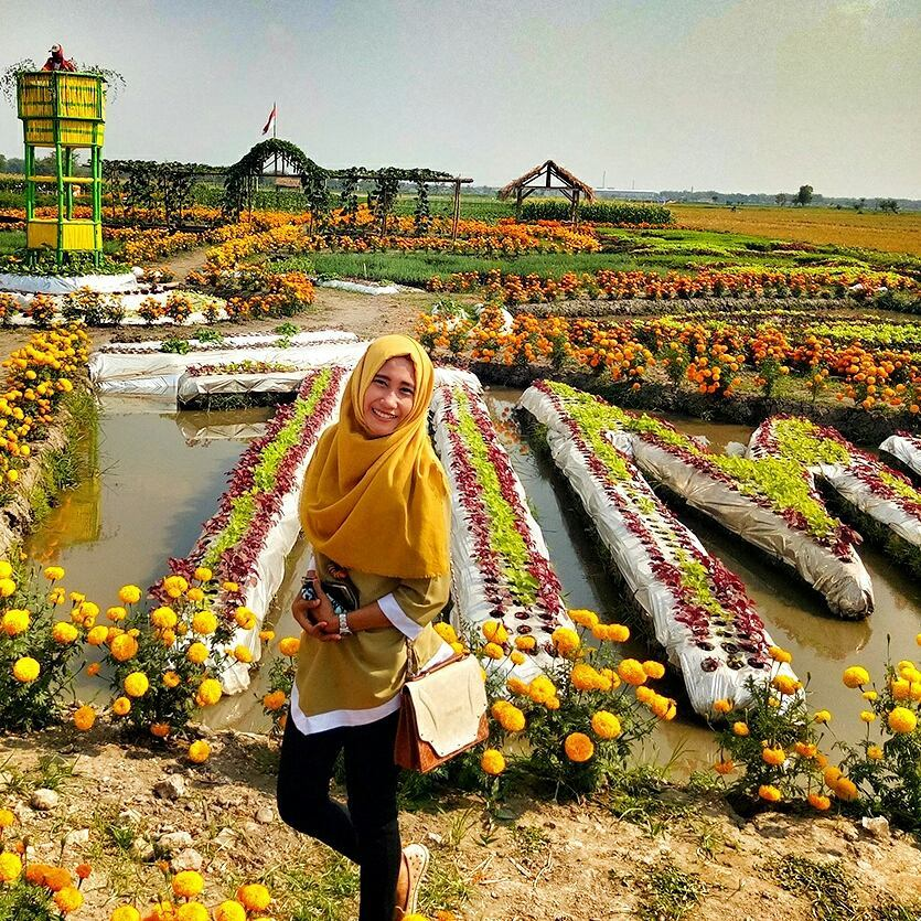 spot foto di taman ponggok