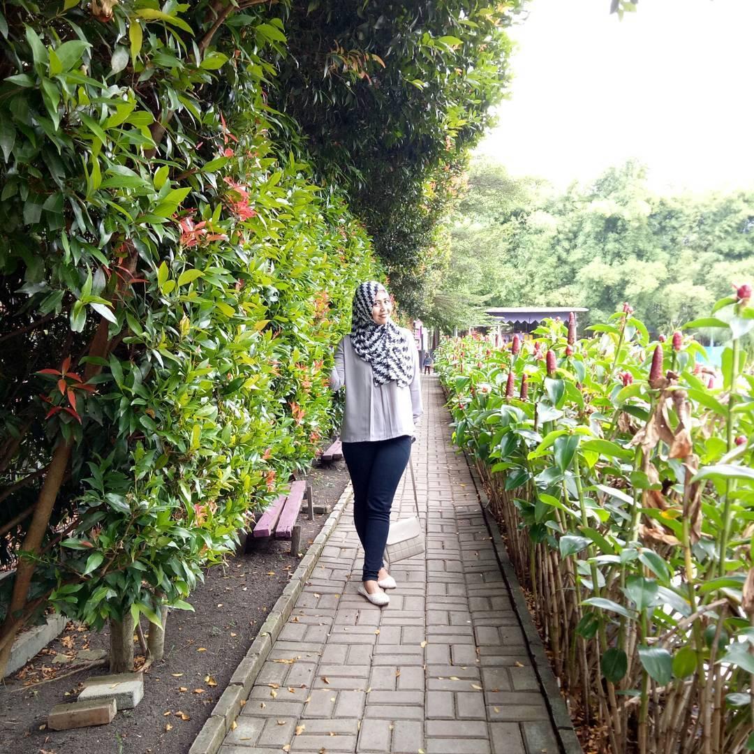 asyiknya jalan-jalan di taman kampung tulip bandung