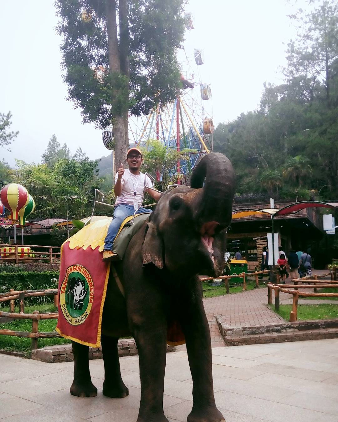 asyiknya naik gajah di taman safari cisarua bogor