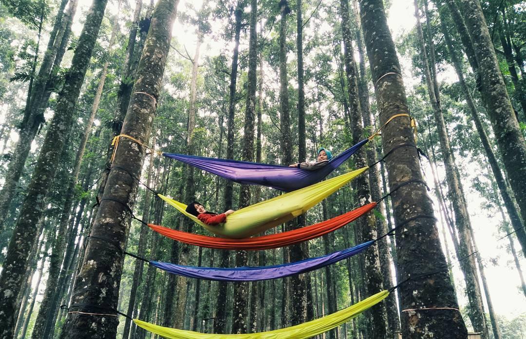 hammocking di kampung kurcaci purbalingga