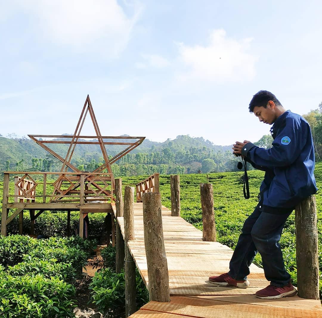 hunting foto di kebun teh gunung gambir jember