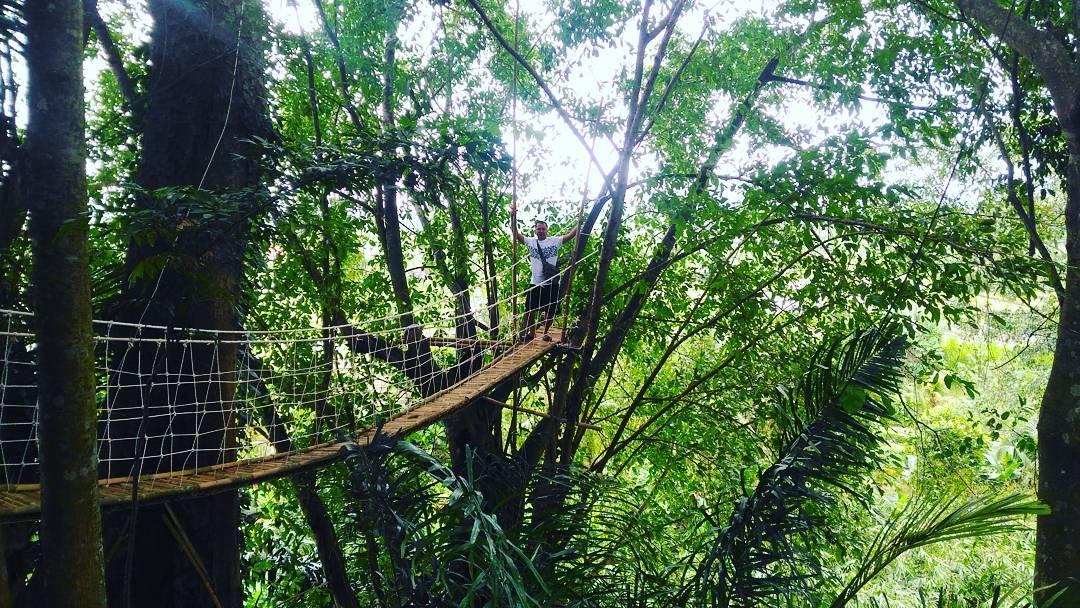 jembatan di rumah pohon bukit lemped