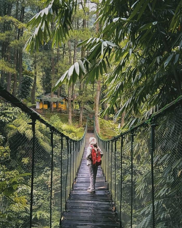 jembatan gantung di loji suaka elang