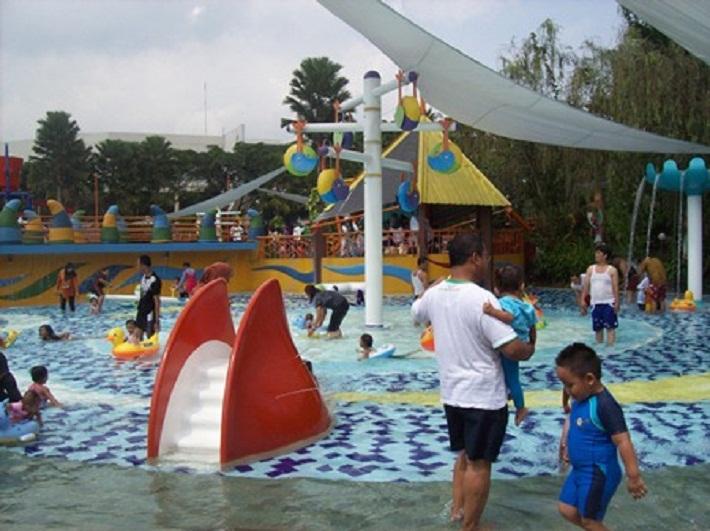 kiddie pool the jungle water bogor