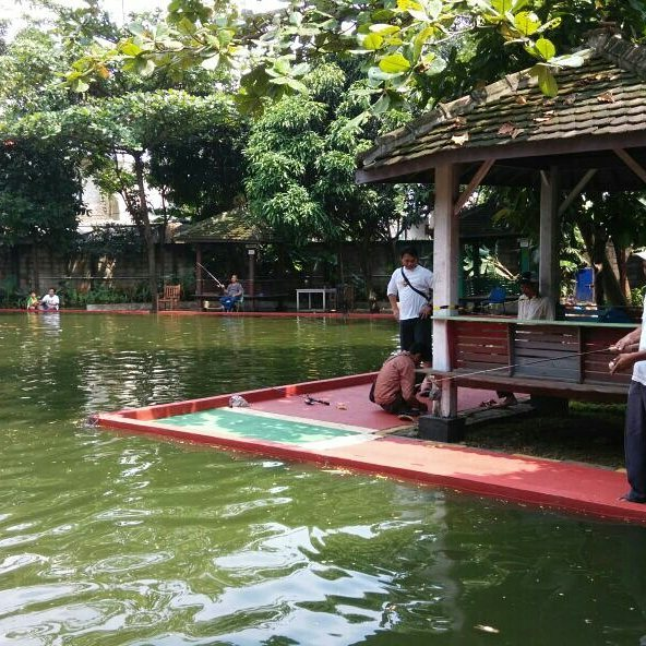 kolam pemancingan ikan di katoomba greenpark