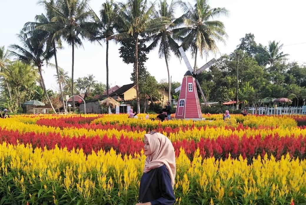 landscape yang mempesona di taman ramadanu