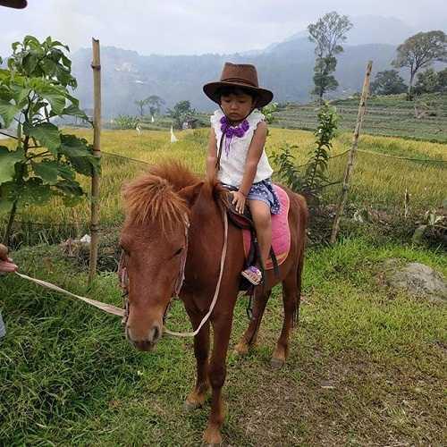 naik kuda taman kelinci pacet