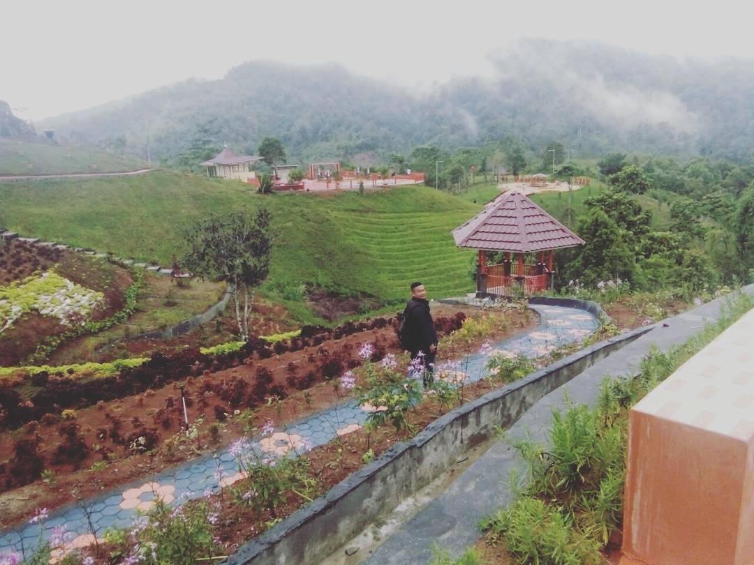 panorama alam di kebun raya liwa
