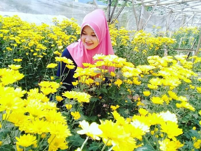 panorama setiya aji flower farm yang cantik