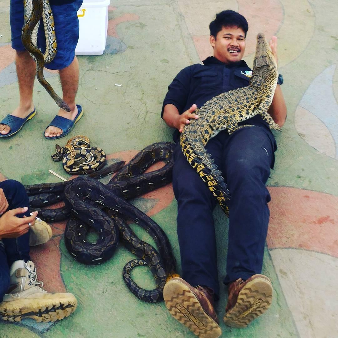 sensasi berfoto bersama reptil di the mountain recreation park kuningan