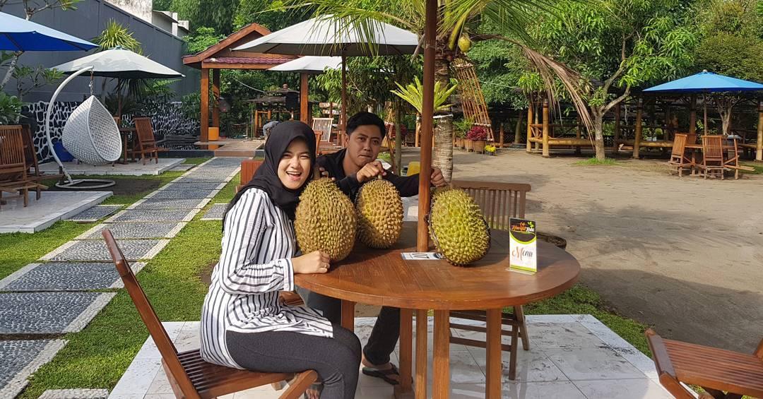 siap menikmati buah durian di kebun bibit kediri