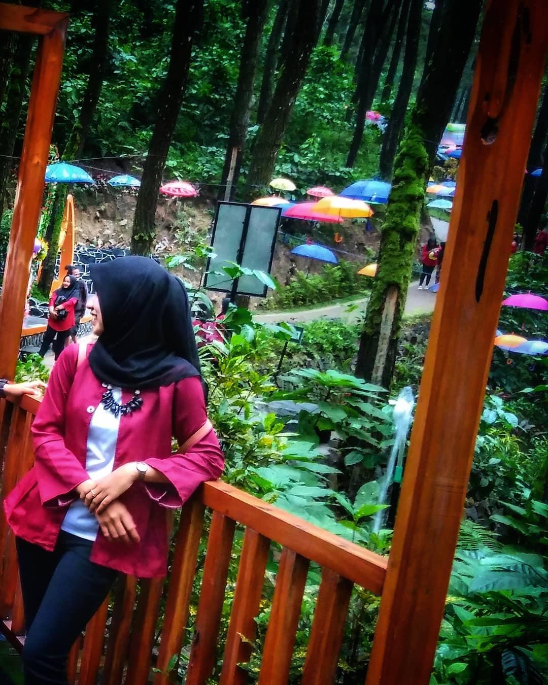 spot foto di srambang park