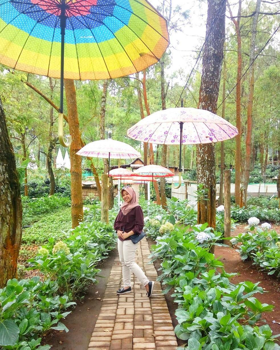 spot payung coban talun