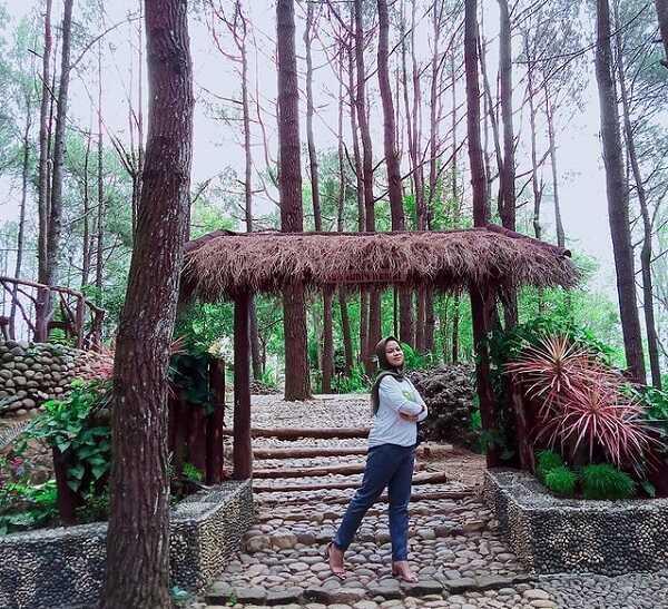swafoto di hutan pinus mangunan dlingo bantul