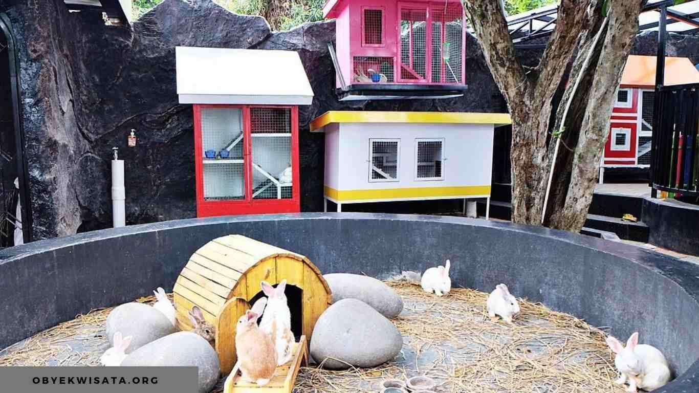 wahana rabbit town bandung