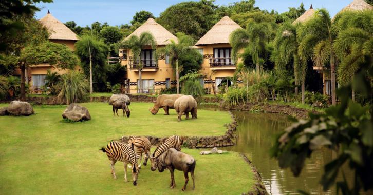 Safari di Bali