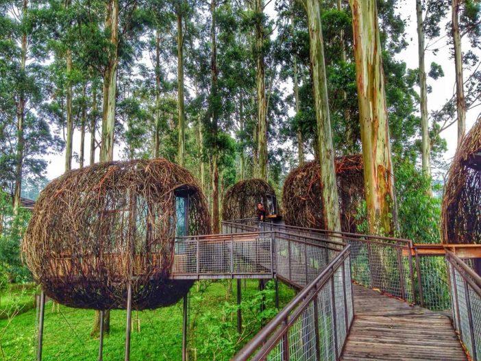 Taman Arimbi dusun bambu lembang bandung