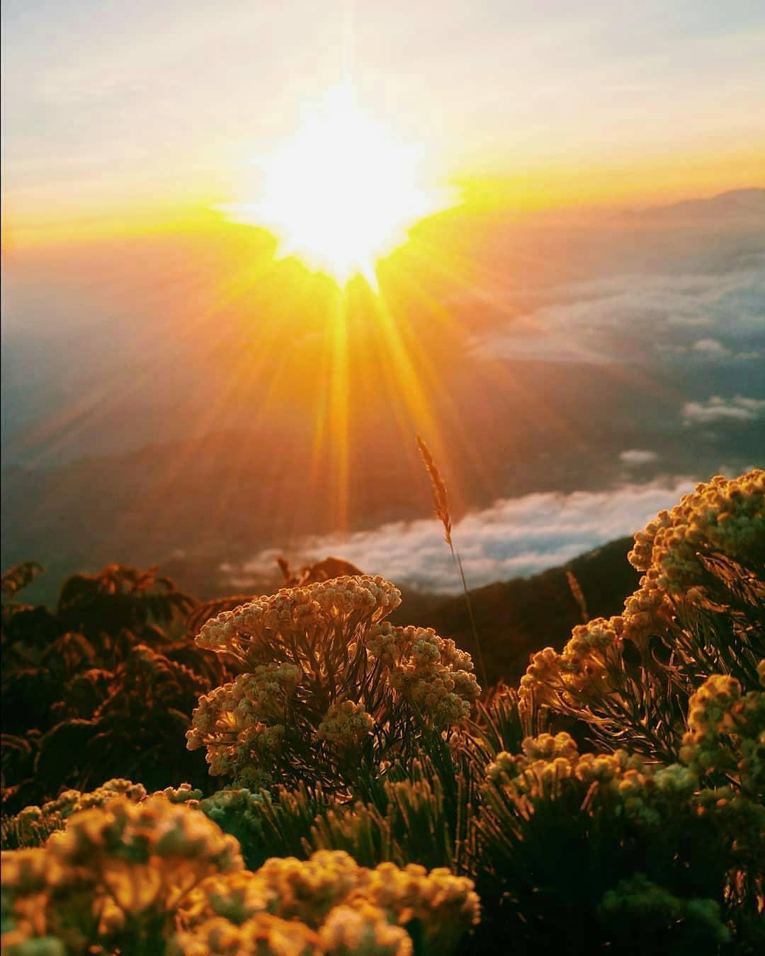view gunung prau