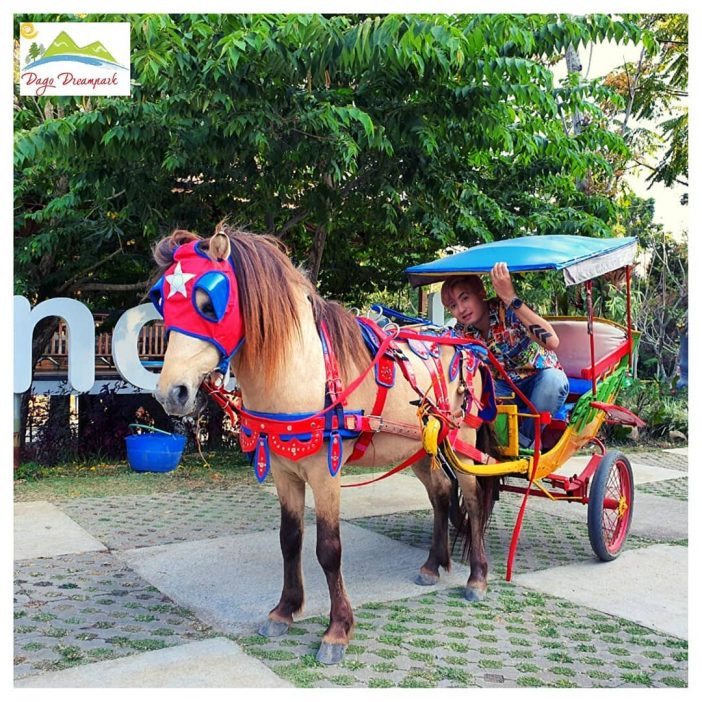 Unicorn Ride dago dream park