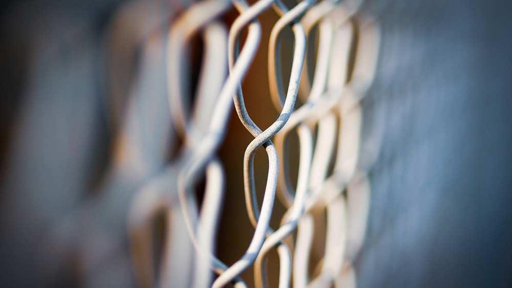 wire mesh adalah